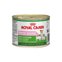 Royal Canin Mini Starter Mousse 195 gr