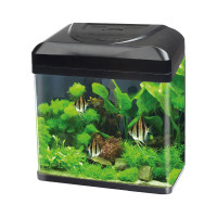 Blu Bios Acquario Billy 30 lt.