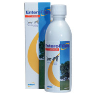 Drn Enterofilus 250 ml
