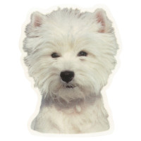 Camon Vetrofanie white terrier