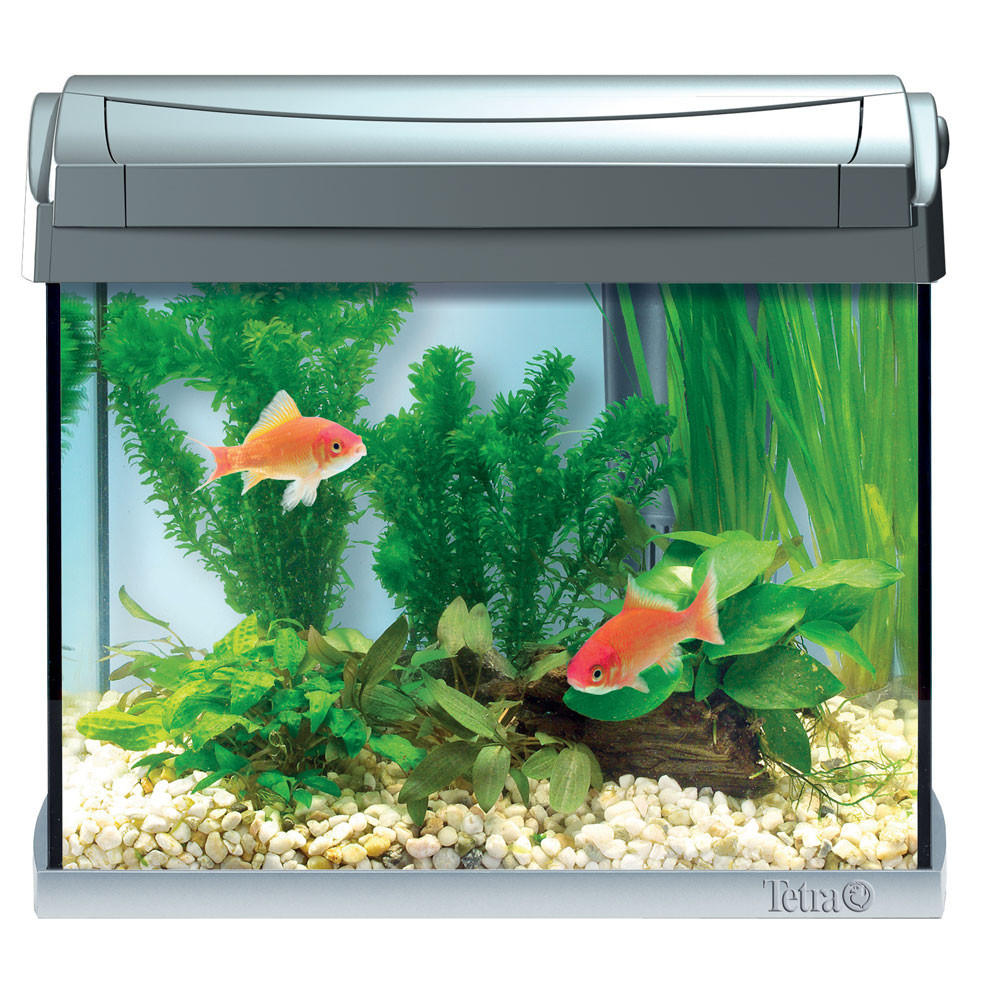 Tetra acquario aquaart acquario super accessoriato con for Acquari design vendita