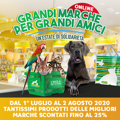 Grandi_Marche_estate_2020